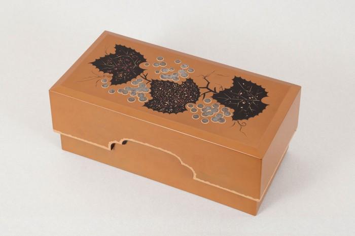 scatola-accessori