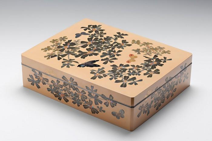 scatola-documenti